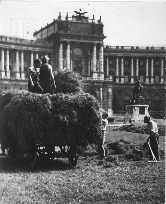 Heuernte 1943
